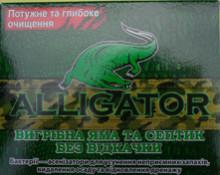 Алігатор